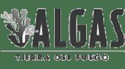 Algas Tierra Del Fuego